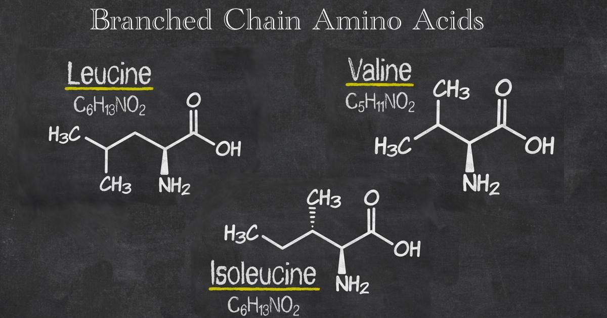 amino acid dietary supplement